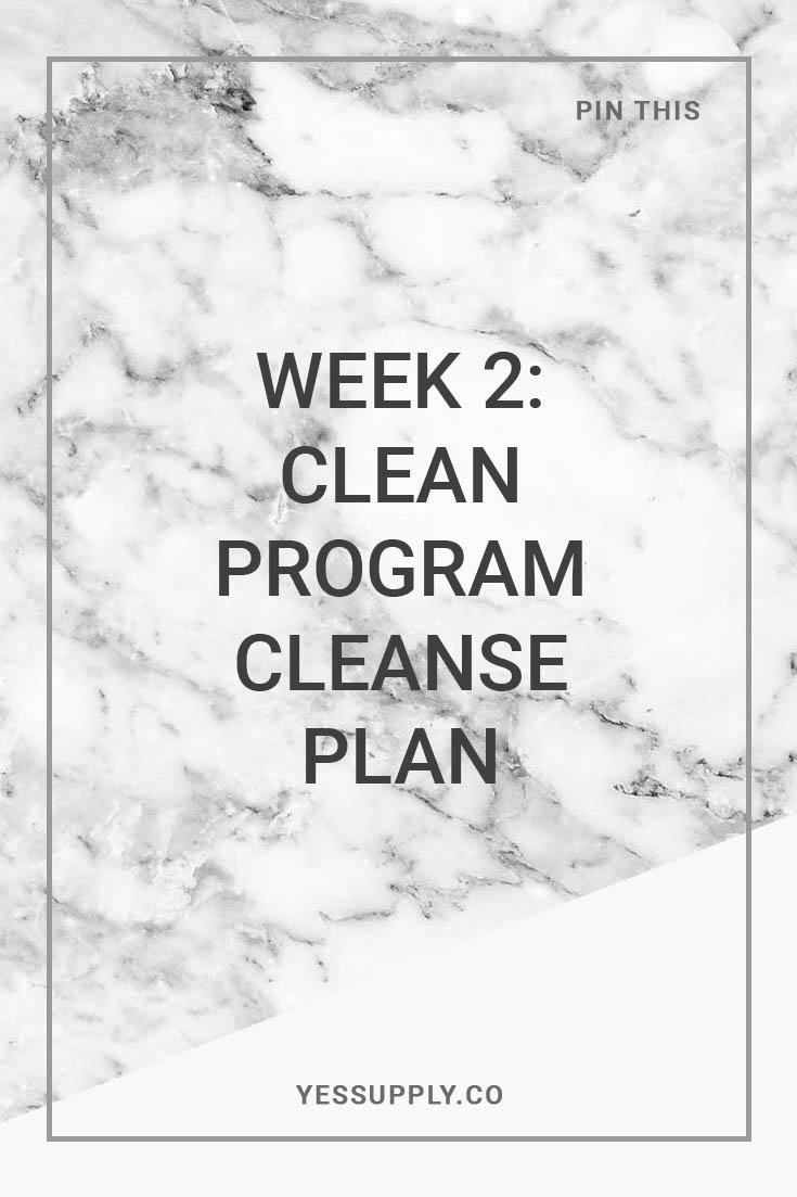 Week 2: Clean Program Cleanse Plan